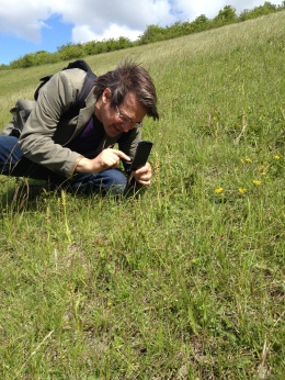 Mark recording man orchids in Kent