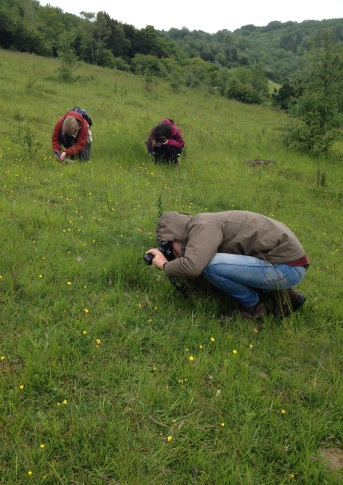 Lucy, Jade and Mike collecting photographic records for common spotted-orchid in Surrey.